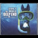 GOVT MULE - The Deep End - Volume 1 & 2 + Hidden Treasures