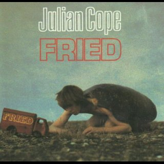 COPE, JULIAN - Fried